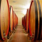 vino-cantina-botti-legno